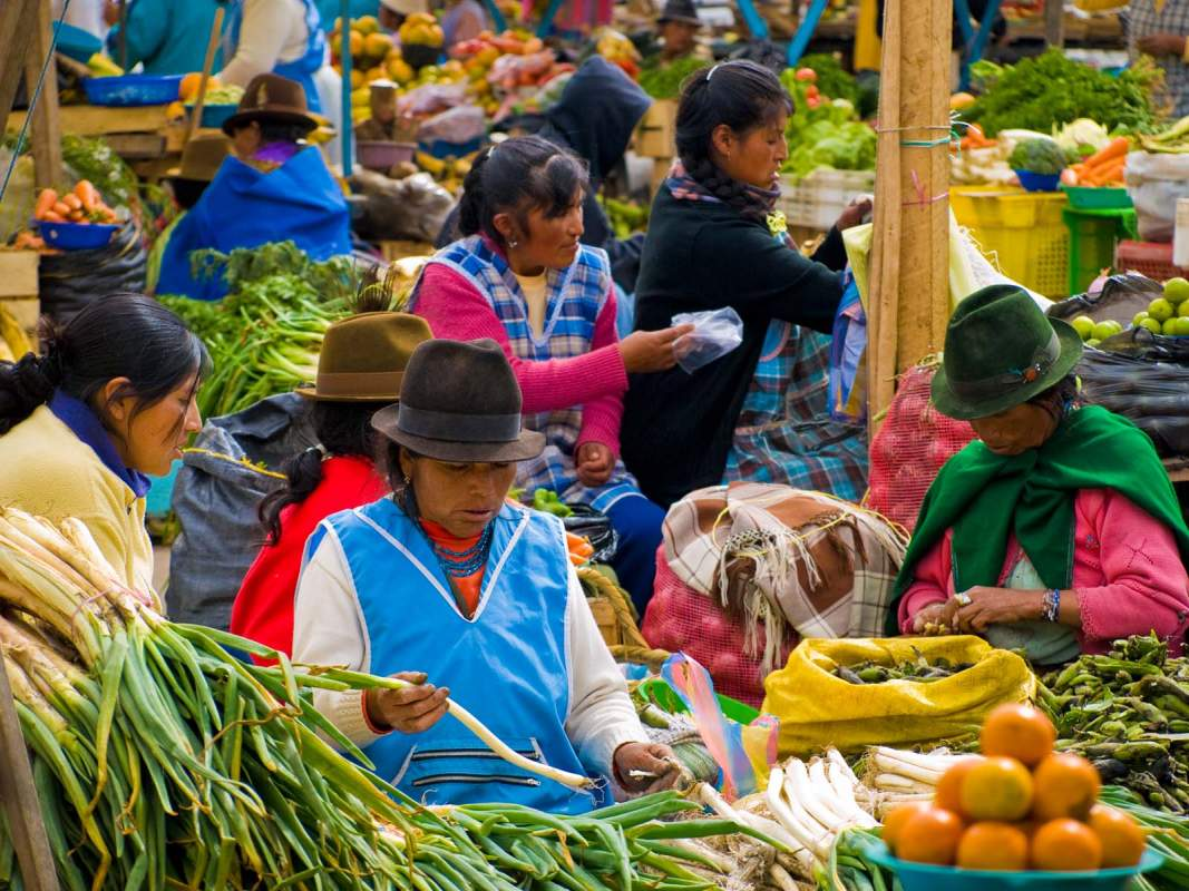 otavalo divorced singles Love for divorced dads: four dating sites worth checking out by katie davis there's no doubt about it the way people connect and find potential love interests has evolved quite a bit over the last decade online dating sites, as well as dating apps, are catered to many different ages, backgrounds, values and more for those who are divorced, and particularly for divorced.
